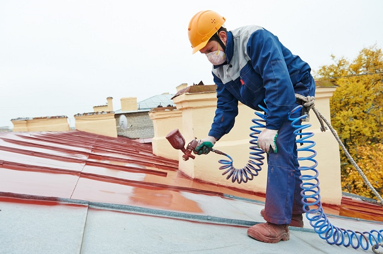 roof-painting.